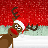Reindeer peeking Stock Images