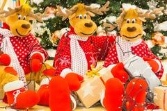 Reindeer preparing Christmas tree lights and presents Stock Image