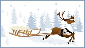 Reindeer pulling sleighs Royalty Free Stock Photo