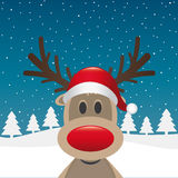 Reindeer red nose santa claus hat Royalty Free Stock Photo
