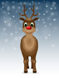 Reindeer with red nose. Stock Photography