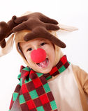 Reindeer Rudolph Stock Images