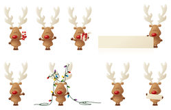 Reindeer Rudolph. 8 separately grouped little Rudolphs Stock Images