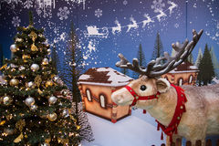 Reindeer of Santa Claus. On the blue background Royalty Free Stock Photography