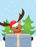 Reindeer with Santa hat Stock Photography