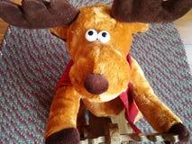 Reindeer. Santa's Christmas Reindeer Stock Image