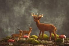 Reindeer Scene Stock Photos
