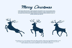 Reindeer Silhouette Christmas New Year Santa Deer Stock Images