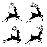 Reindeer silhouette illustration. Isolated on white background Stock Image