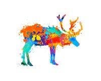 Reindeer silhouette of splash paint. Reindeer silhouette of watercolor splash paint on white background Royalty Free Stock Images
