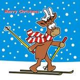 Reindeer and ski Royalty Free Stock Image