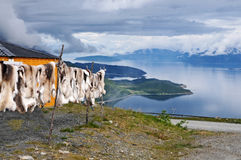 Reindeer skin. Sami, the indigenous people in the arctic area, sell reindeer skins at touristic viewpoints in norway Royalty Free Stock Images