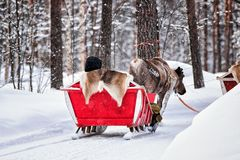 Reindeer sledge at winter Rovaniemi Finnish Lapland. Reindeer sledge at winter Rovaniemi, Finnish Lapland Royalty Free Stock Photography
