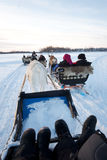 Reindeer sleigh ride in the arctic circle. Reindeer Sleigh ride over a frozen lake in the arctic circle Stock Image