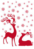 Reindeer in snowfall,. Red reindeer with snowflakes,  background Royalty Free Stock Photography