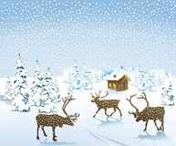 Reindeer in snowy countryside Stock Photo