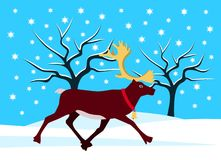 Reindeer in snowy landscape Royalty Free Stock Photo