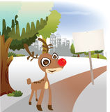 Reindeer stand on the park Stock Photography