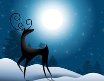 Reindeer Standing In Moonlight. A clip art illustration of a deer or reindeer standing in the winter moonlight Royalty Free Stock Photography