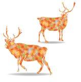 Reindeer star vector illustration