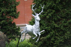 Reindeer Statue. A statue of a reindeer Royalty Free Stock Photography