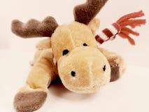 Reindeer toy childhood christmas deer holiday plush soft winter. Reindeer toy childhood christmas deer holiday plush soft Stock Images