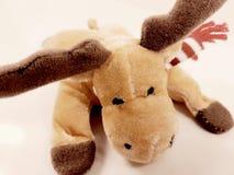 Reindeer toy childhood christmas deer holiday plush soft winter. Reindeer toy childhood christmas deer holiday plush soft Royalty Free Stock Photo
