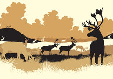 Reindeer tundra. EPS8 editable vector illustration of reindeer or caribou moving across a tundra landscape with all figures as separate objects Royalty Free Stock Photography