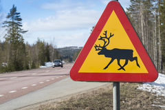 Reindeer warning sign Sweden. Reindeer warning sign at E45 road in Jamtland (Swedish: Jämtland), Sweden Royalty Free Stock Photo