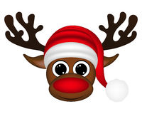 Reindeer on a white background Stock Images