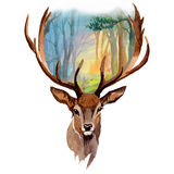 Reindeer wild animal in a watercolor style isolated. Full name of the animal: reindeer. Aquarelle wild animal for background, texture, wrapper pattern or Stock Image