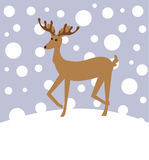 Reindeer in winter Royalty Free Stock Images