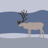 Reindeer in winter mountains. Vector Royalty Free Illustration