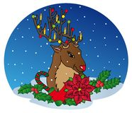 Reindeer with Xmas decoration Royalty Free Stock Image