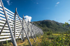 Reindeerfence at Sommaroy northern Norway. Fence for directing and leading reindeers Royalty Free Stock Images