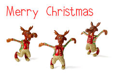 Reindeers Christmas Royalty Free Stock Image