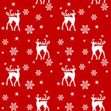 Reindeers in forest Stock Photography