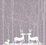 Reindeers in love Stock Photo