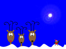 Reindeers and robin. Three reindeers lined up in the snow under a blue sky and bright moon light Royalty Free Stock Photography
