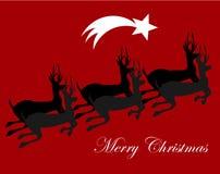 Reindeers running Royalty Free Stock Photo