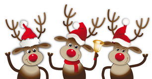 Reindeers with santa claus hats have fun Royalty Free Stock Photos