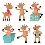Reindeers set Stock Photography