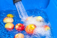 Reine Äpfel Stockfotografie