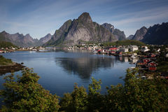 reine Photos stock