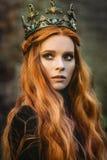 Reine de gingembre près du château Photos stock