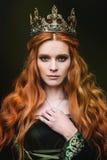 Reine de gingembre près du château Image libre de droits