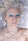 Reine de glace Photo stock