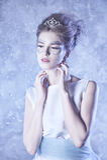 Reine de l'hiver Photo stock
