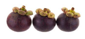 Reine de mangoustans des fruits, fruit mûr de mangoustan d'isolement sur W Photo stock