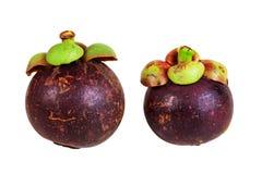 Reine de mangoustans des fruits sur le blanc Photographie stock libre de droits